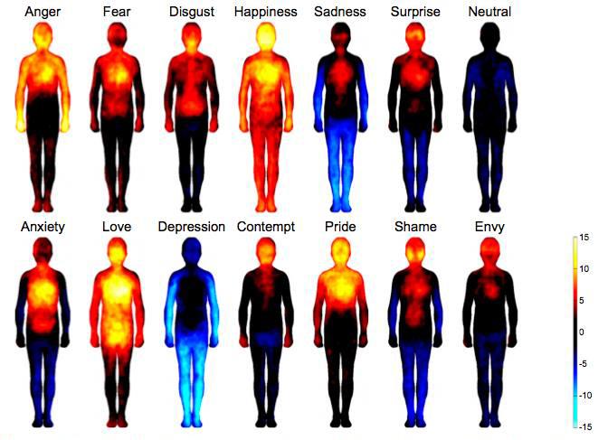 emozioni_termografia